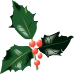 holly_leaves_and_berries