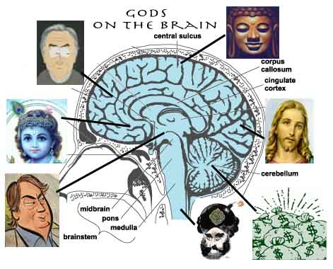 brain_on_god-Cartoon