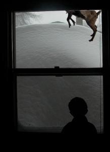 Reindeer_Feet