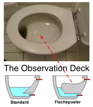 Toilet Observations Triangulations