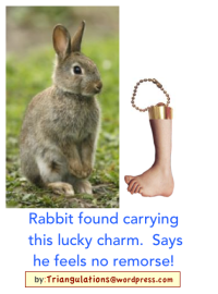 human foot for rabbit