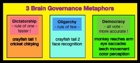 brain_gov