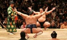 sumo_match