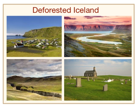 Deforested Iceland